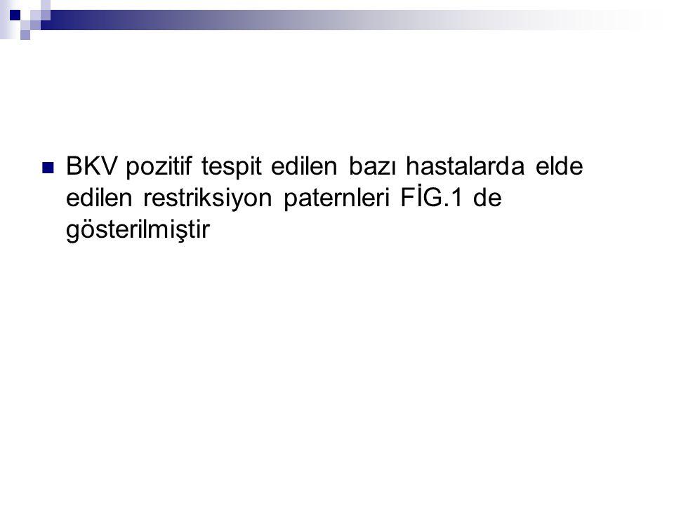 BKV pozitif tespit edilen bazı hastalarda elde edilen restriksiyon paternleri FİG.1 de gösterilmiştir
