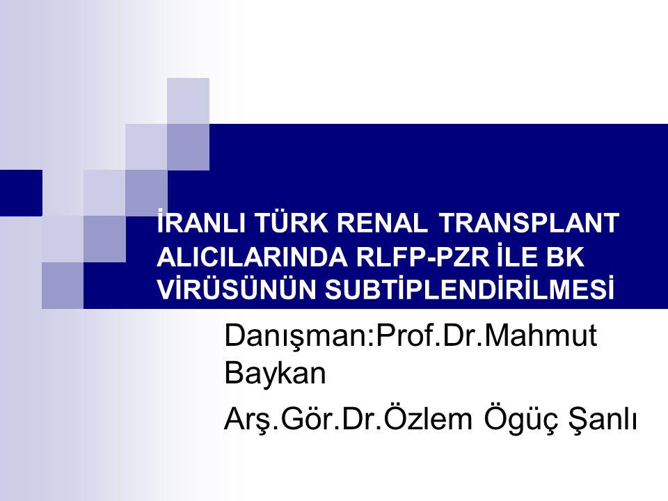 Danışman:Prof.Dr.Mahmut Baykan Arş.Gör.Dr.Özlem Ögüç Şanlı