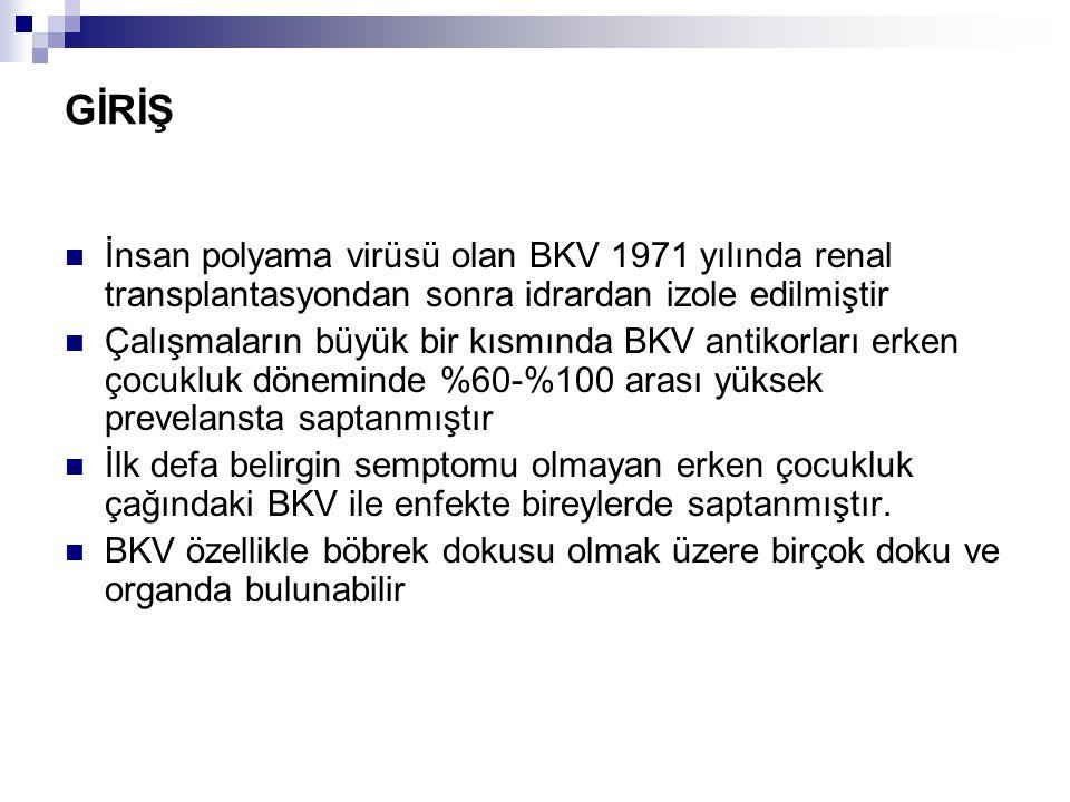 GİRİŞ İnsan polyama virüsü olan BKV 1971 yılında renal transplantasyondan sonra idrardan izole edilmiştir.