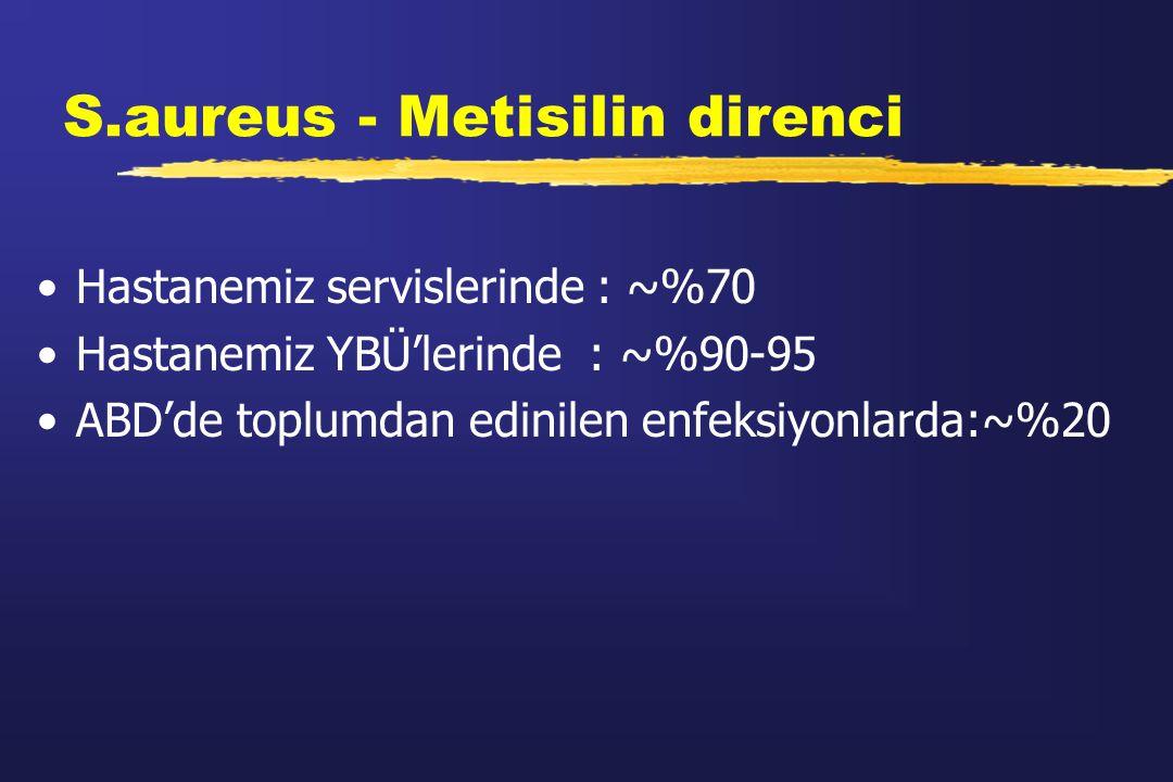 S.aureus - Metisilin direnci