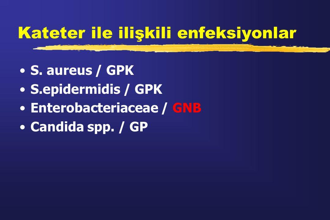 Kateter ile ilişkili enfeksiyonlar