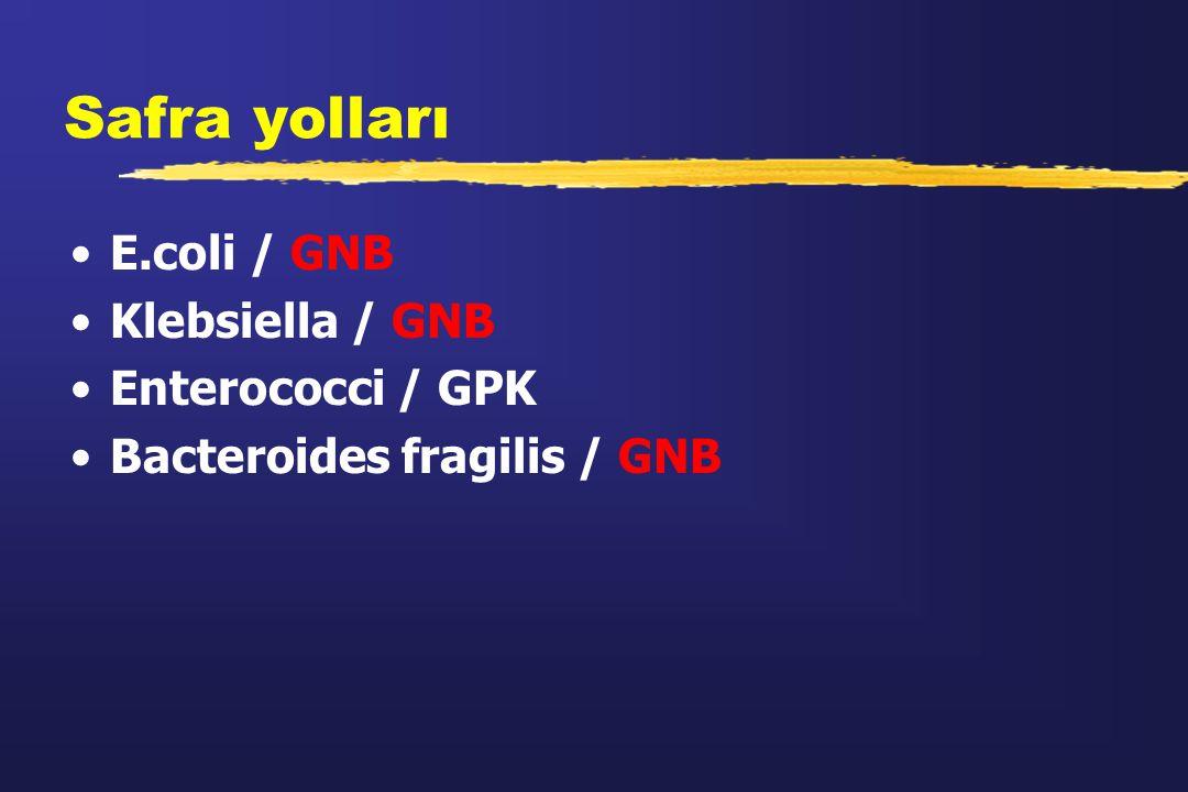 Safra yolları E.coli / GNB Klebsiella / GNB Enterococci / GPK