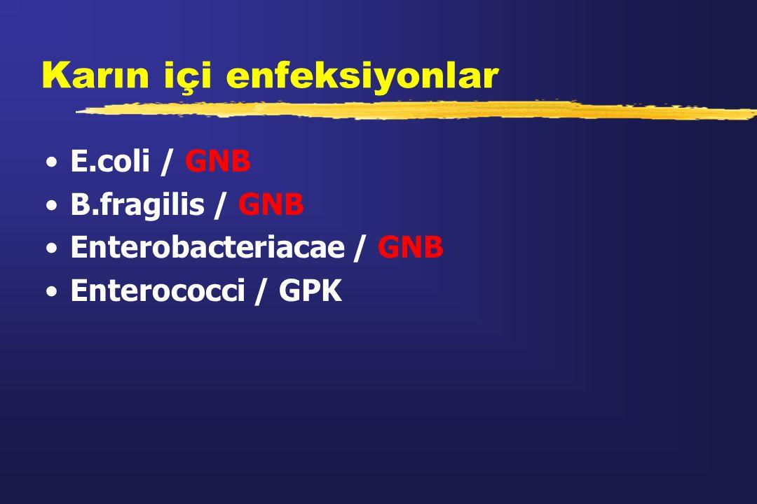 Karın içi enfeksiyonlar