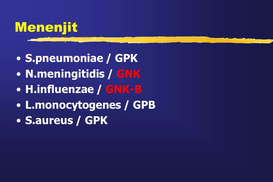 Menenjit S.pneumoniae / GPK N.meningitidis / GNK H.influenzae / GNK-B