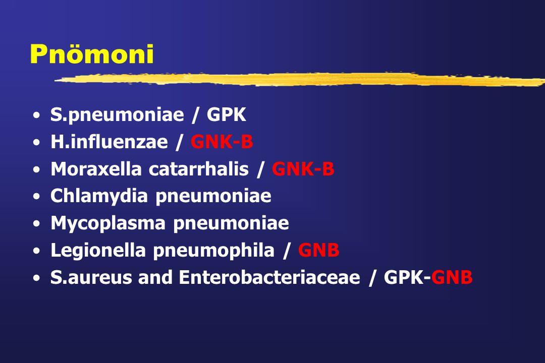 Pnömoni S.pneumoniae / GPK H.influenzae / GNK-B