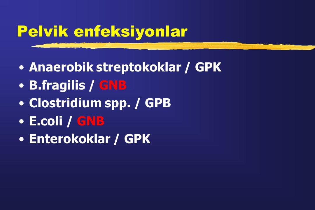 Pelvik enfeksiyonlar Anaerobik streptokoklar / GPK B.fragilis / GNB