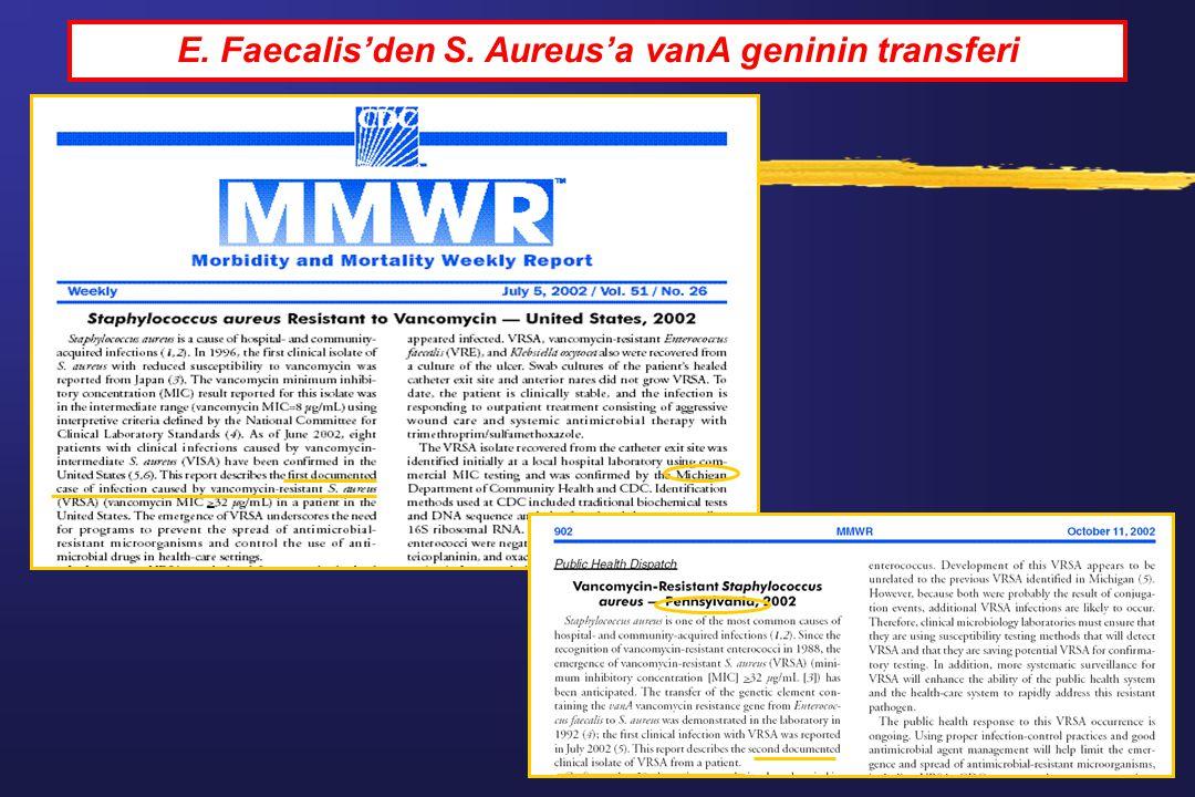 E. Faecalis'den S. Aureus'a vanA geninin transferi
