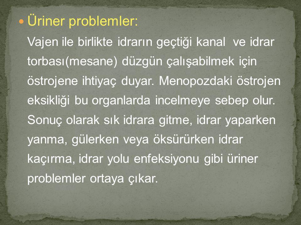 Üriner problemler: