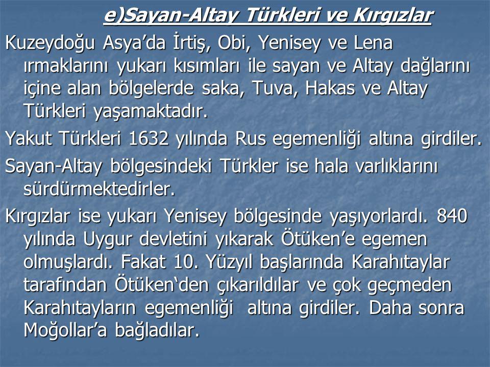 e)Sayan-Altay Türkleri ve Kırgızlar