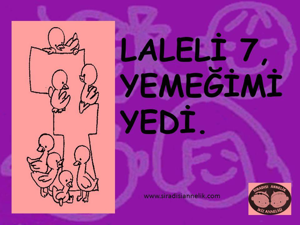 LALELİ 7, YEMEĞİMİ YEDİ. www.siradisiannelik.com