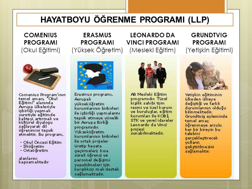 HAYATBOYU ÖĞRENME PROGRAMI (LLP)