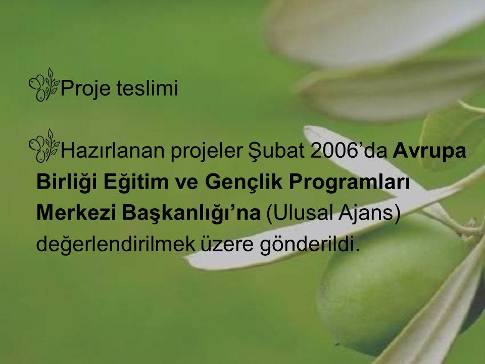 Proje teslimi Hazırlanan projeler Şubat 2006'da Avrupa. Birliği Eğitim ve Gençlik Programları. Merkezi Başkanlığı'na (Ulusal Ajans)