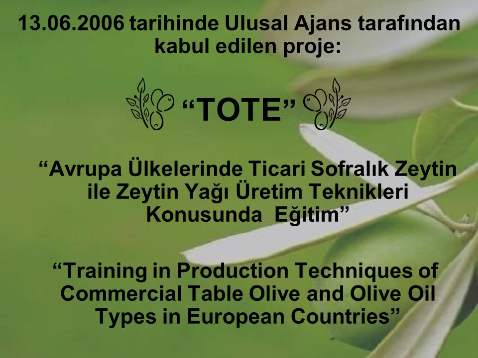 13.06.2006 tarihinde Ulusal Ajans tarafından kabul edilen proje: