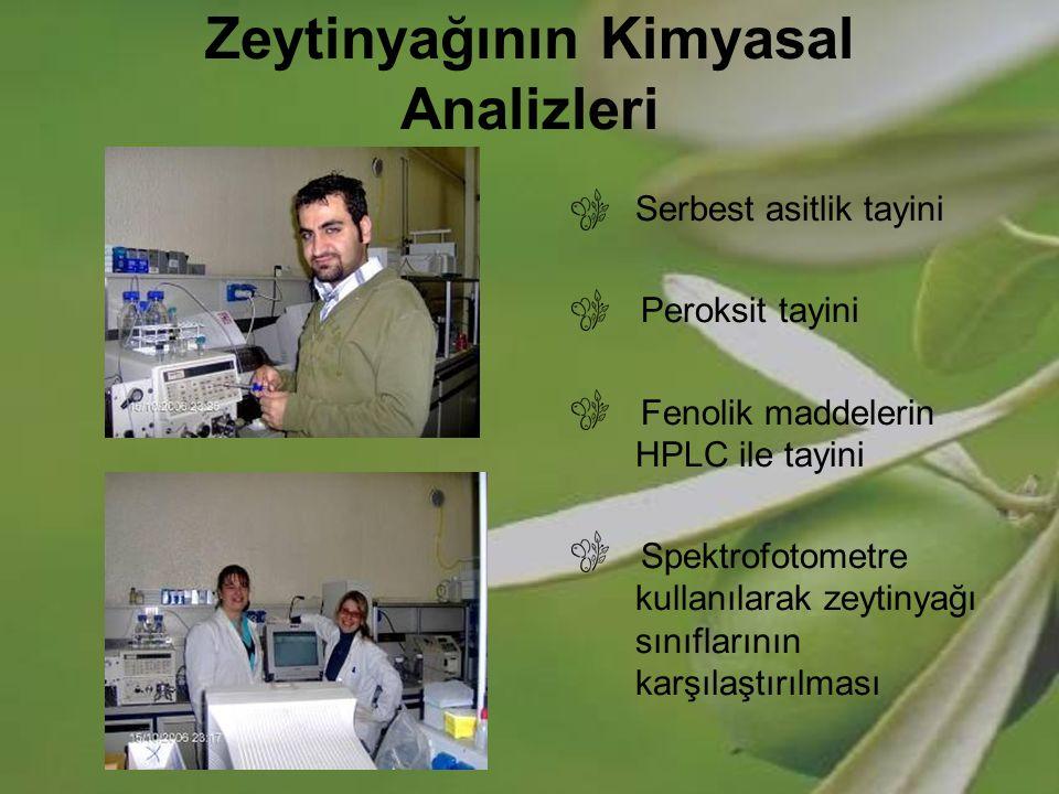 Zeytinyağının Kimyasal Analizleri