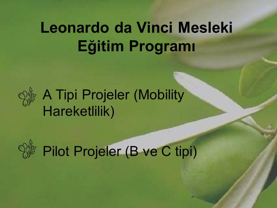 Leonardo da Vinci Mesleki Eğitim Programı