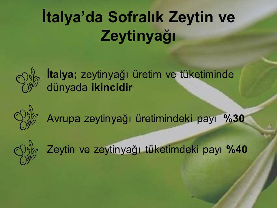 İtalya'da Sofralık Zeytin ve Zeytinyağı