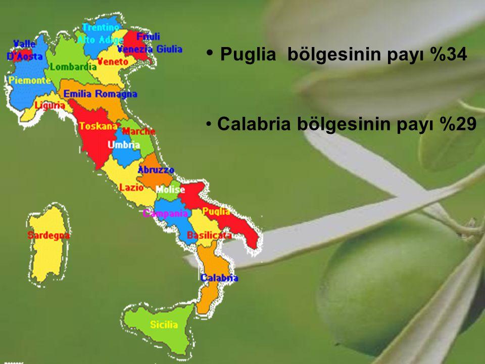 Puglia bölgesinin payı %34