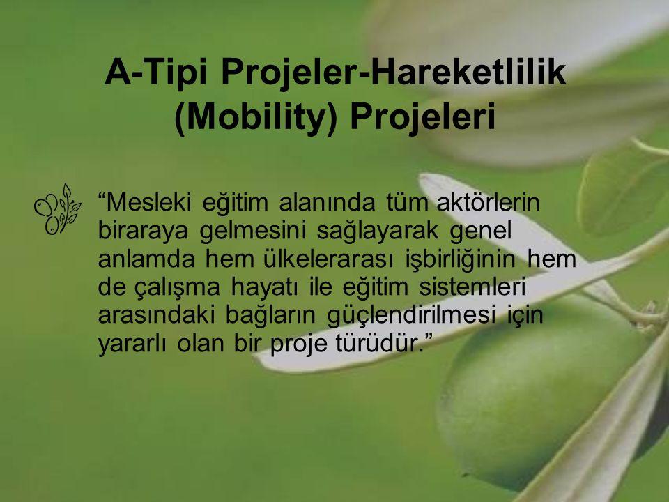 A-Tipi Projeler-Hareketlilik (Mobility) Projeleri