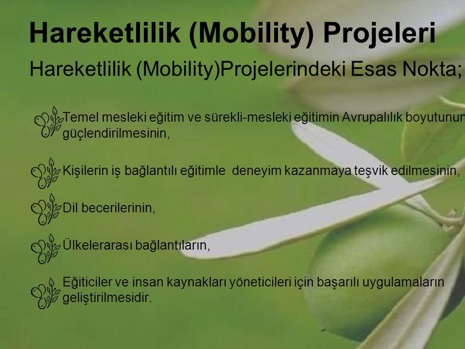 Hareketlilik (Mobility) Projeleri