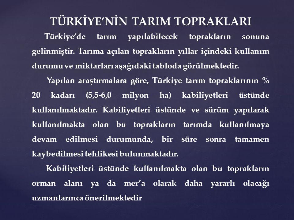 TÜRKİYE'NİN TARIM TOPRAKLARI