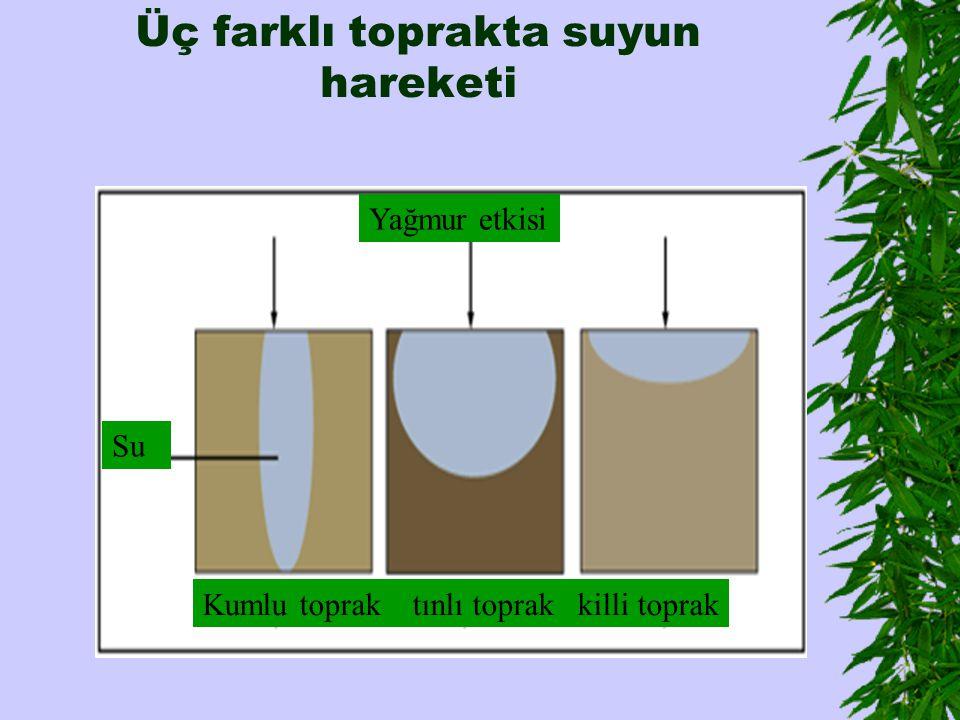 Üç farklı toprakta suyun hareketi