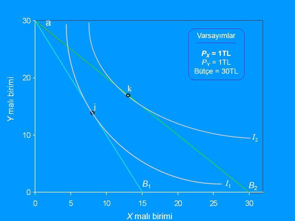 a k Y malı birimi j I2 B1 I1 B2 X malı birimi Varsayımlar PX = 1TL