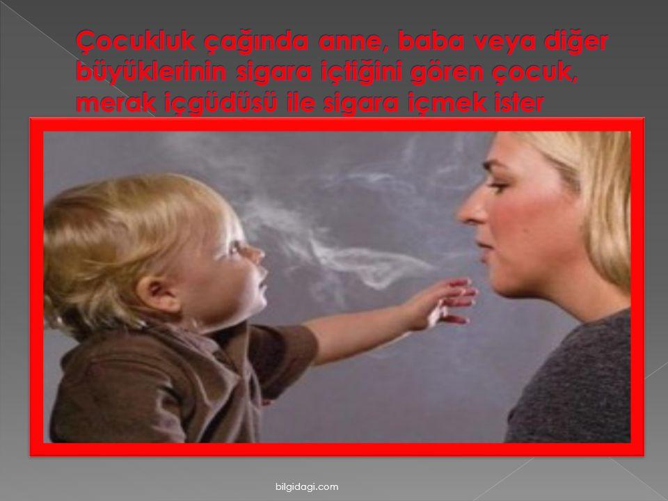 Çocukluk çağında anne, baba veya diğer büyüklerinin sigara içtiğini gören çocuk, merak içgüdüsü ile sigara içmek ister