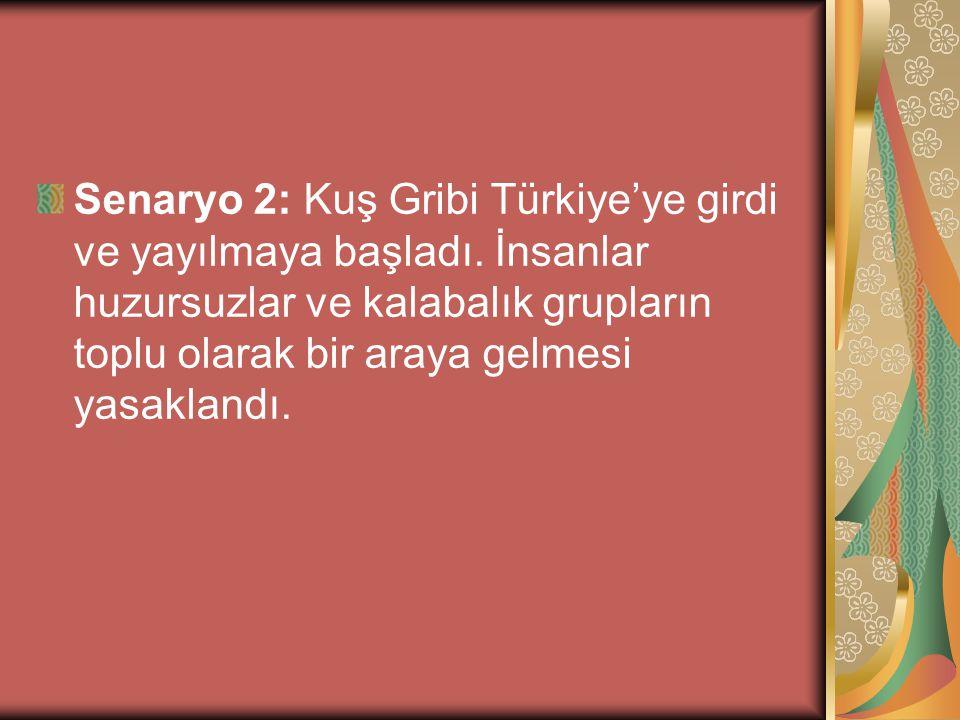 Senaryo 2: Kuş Gribi Türkiye'ye girdi ve yayılmaya başladı