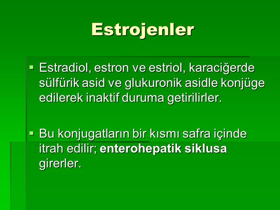 Estrojenler Estradiol, estron ve estriol, karaciğerde sülfürik asid ve glukuronik asidle konjüge edilerek inaktif duruma getirilirler.
