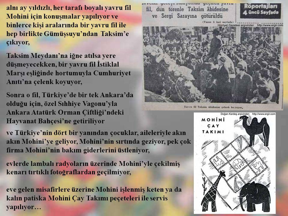 alnı ay yıldızlı, her tarafı boyalı yavru fil Mohini için konuşmalar yapılıyor ve binlerce kişi aralarında bir yavru fil ile hep birlikte Gümüşsuyu'ndan Taksim'e çıkıyor,