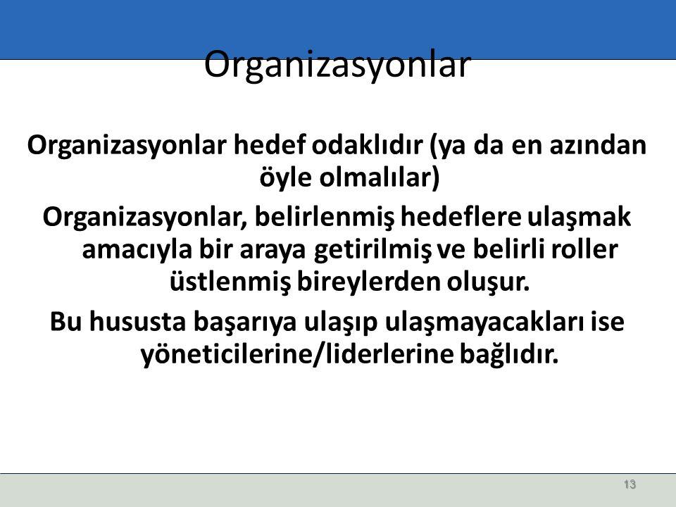 Organizasyonlar