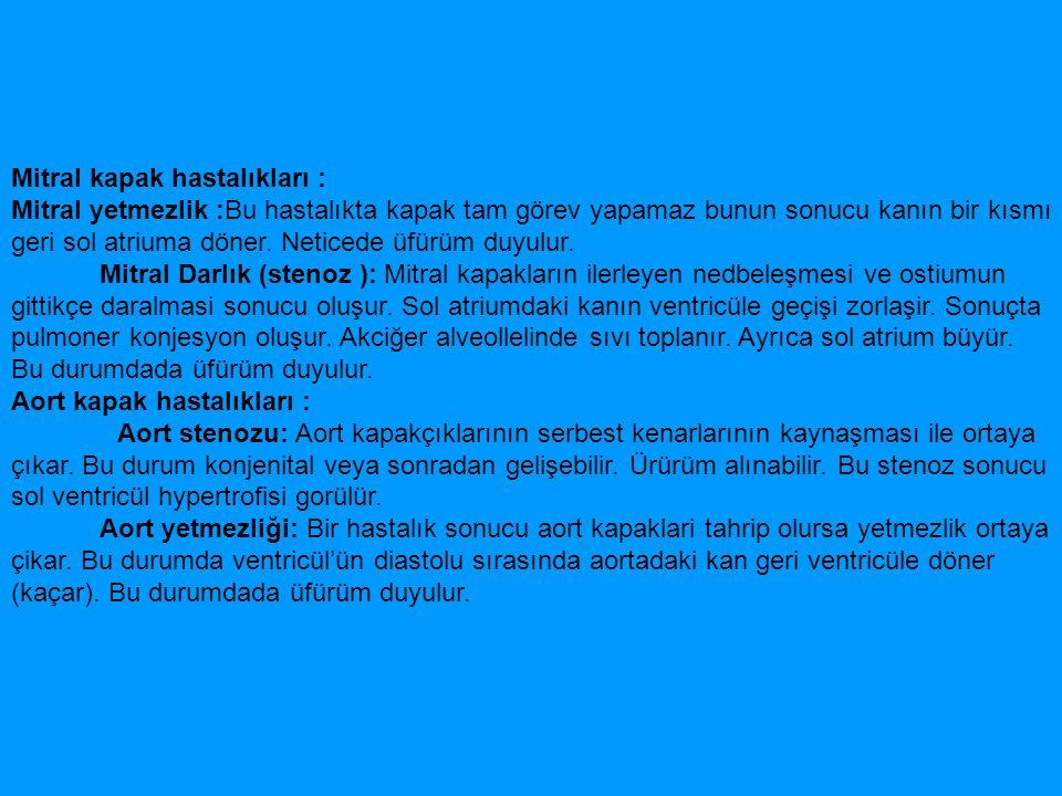 Mitral kapak hastalıkları :