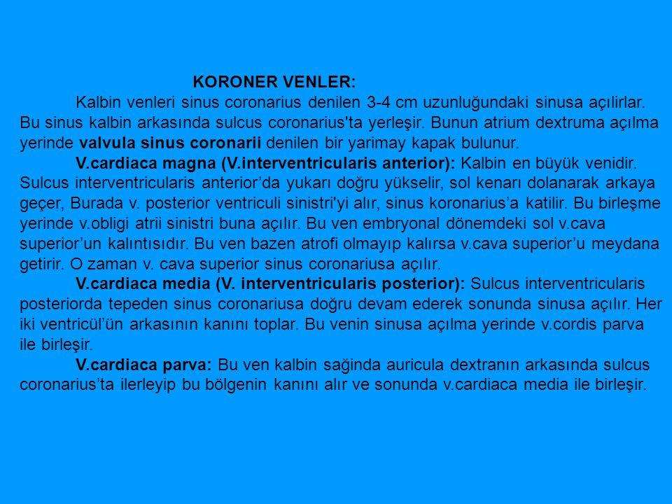 KORONER VENLER: