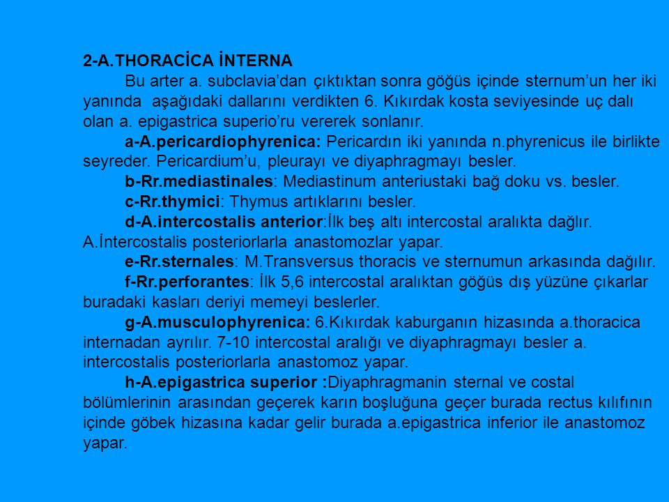 2-A.THORACİCA İNTERNA