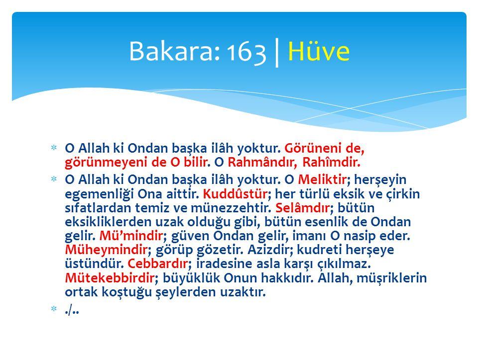 Bakara: 163 | Hüve O Allah ki Ondan başka ilâh yoktur. Görüneni de, görünmeyeni de O bilir. O Rahmândır, Rahîmdir.