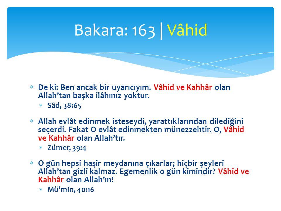 Bakara: 163 | Vâhid De ki: Ben ancak bir uyarıcıyım. Vâhid ve Kahhâr olan Allah'tan başka ilâhınız yoktur.