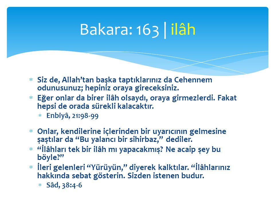 Bakara: 163 | ilâh Siz de, Allah'tan başka taptıklarınız da Cehennem odunusunuz; hepiniz oraya gireceksiniz.