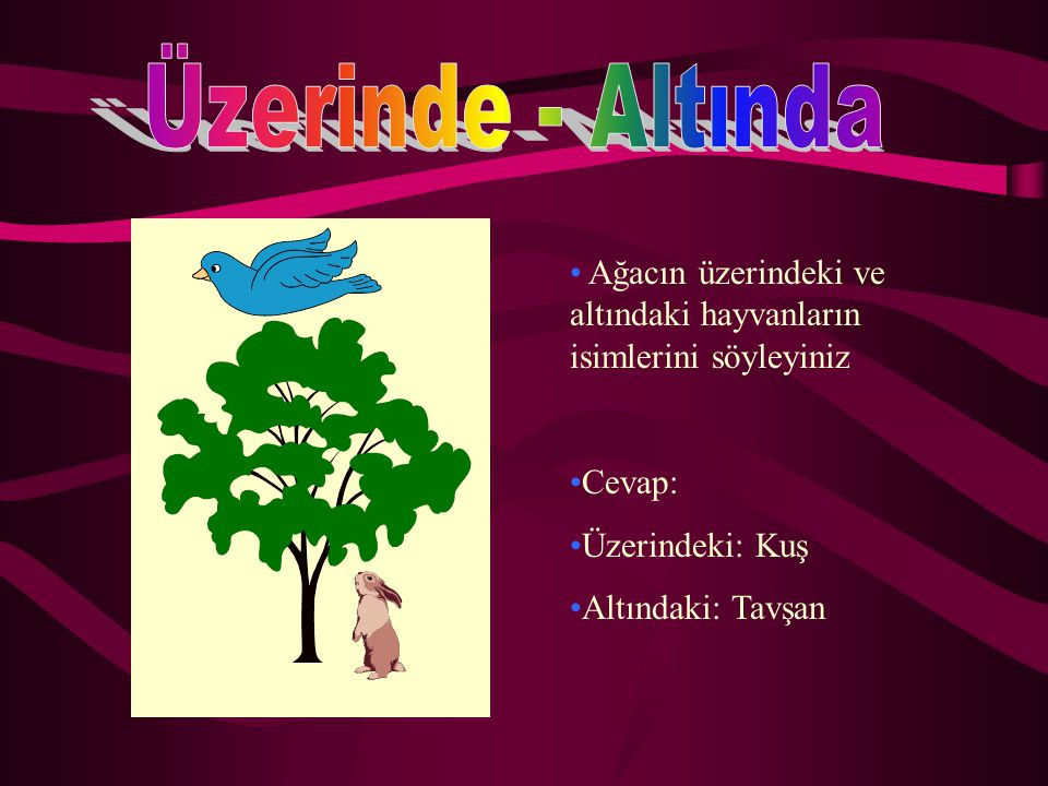 Üzerinde - Altında Ağacın üzerindeki ve altındaki hayvanların isimlerini söyleyiniz. Cevap: Üzerindeki: Kuş.