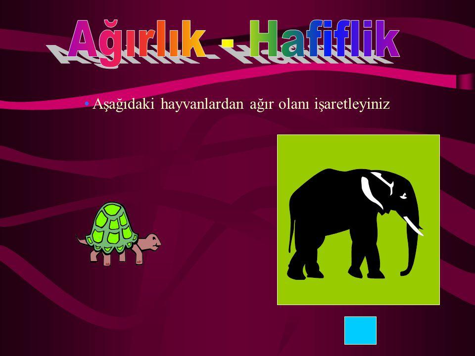 Ağırlık - Hafiflik Aşağıdaki hayvanlardan ağır olanı işaretleyiniz