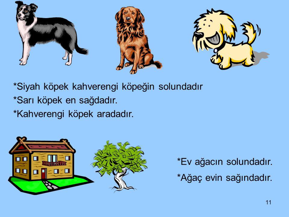*Siyah köpek kahverengi köpeğin solundadır