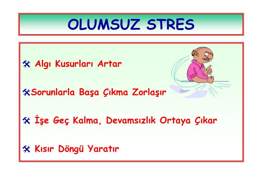 OLUMSUZ STRES Algı Kusurları Artar Sorunlarla Başa Çıkma Zorlaşır