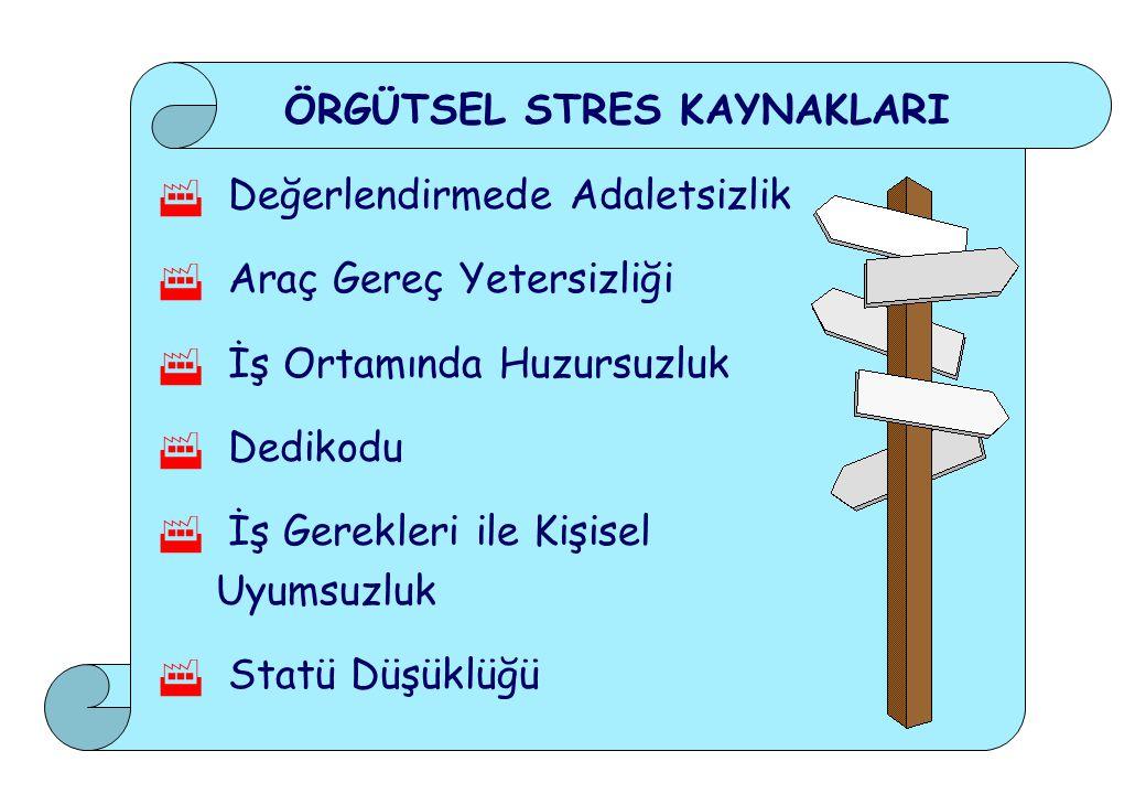 ÖRGÜTSEL STRES KAYNAKLARI