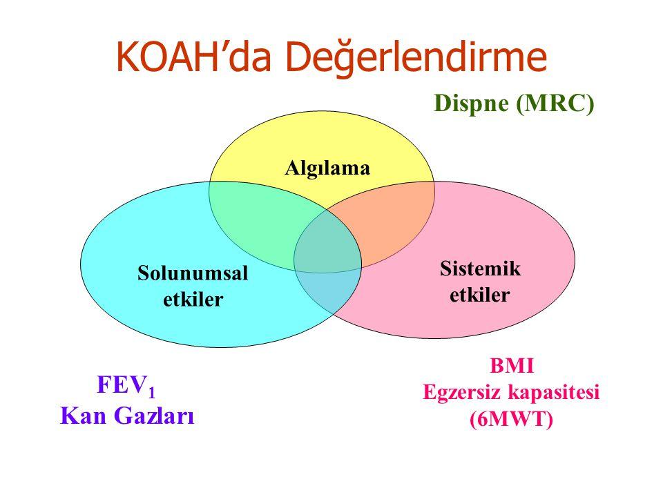 KOAH'da Değerlendirme