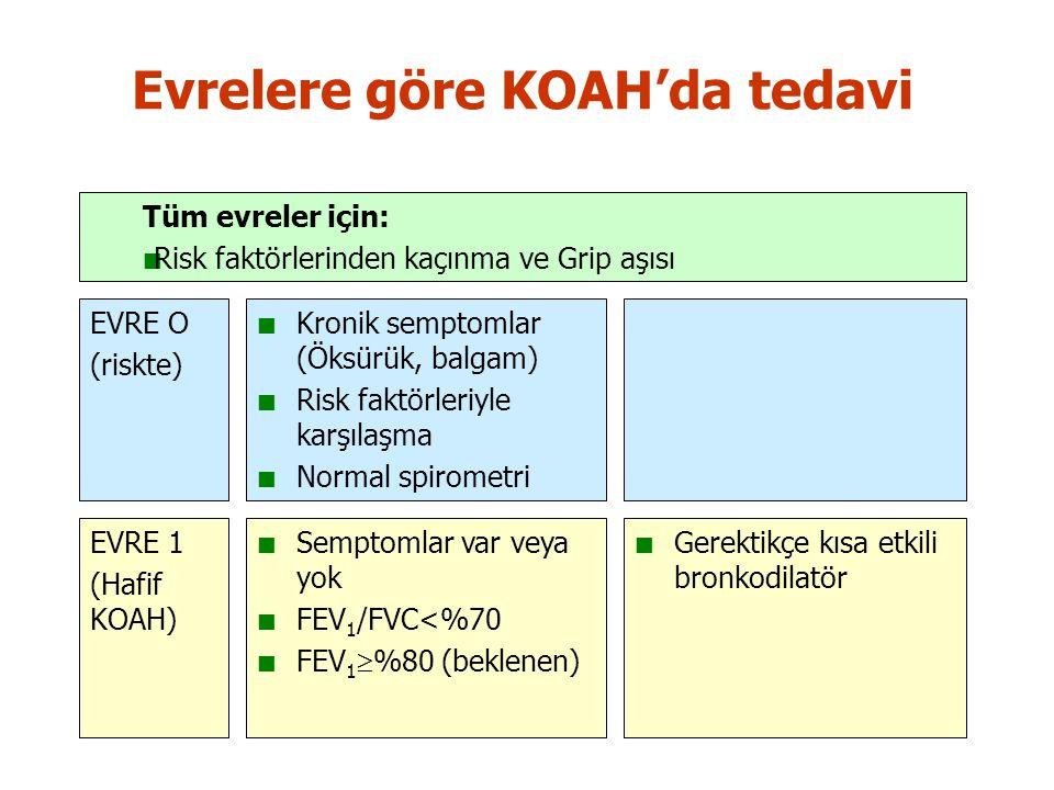 Evrelere göre KOAH'da tedavi