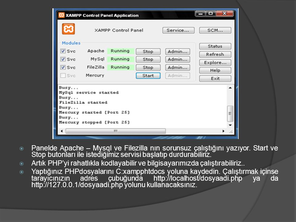 Panelde Apache – Mysql ve Filezilla nın sorunsuz çalıştığını yazıyor