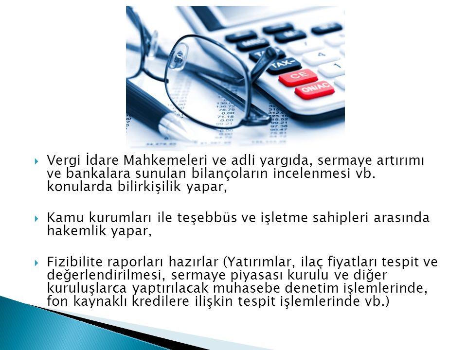 Vergi İdare Mahkemeleri ve adli yargıda, sermaye artırımı ve bankalara sunulan bilançoların incelenmesi vb. konularda bilirkişilik yapar,