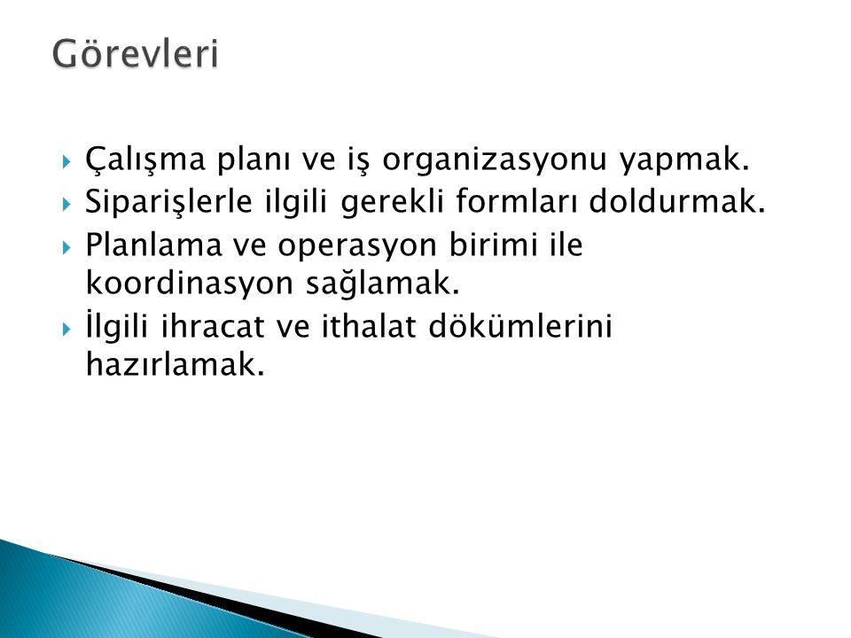 Görevleri Çalışma planı ve iş organizasyonu yapmak.
