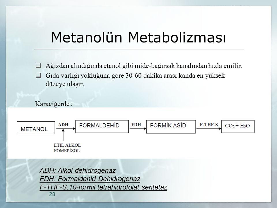 Metanolün Metabolizması