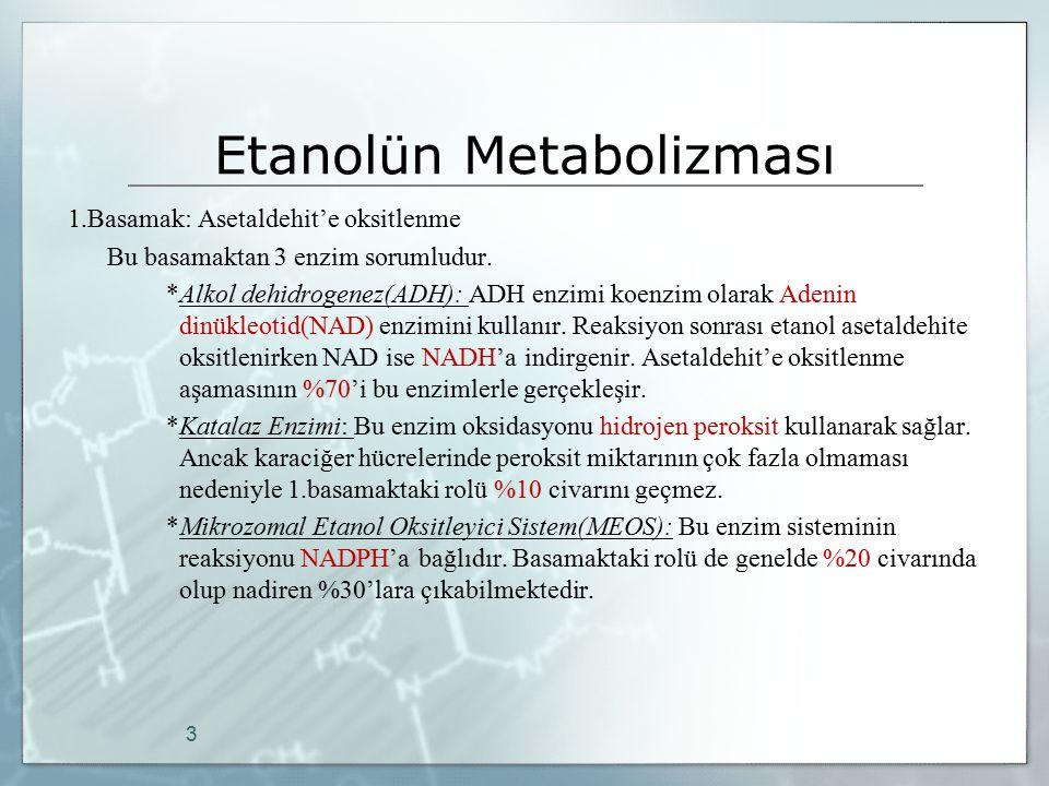 Etanolün Metabolizması