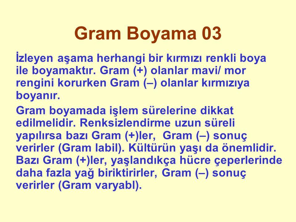 Gram Boyama 03